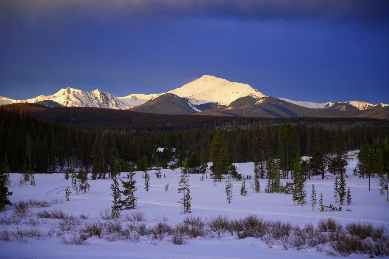 Byers Peak Meadow in Winter Park, Colorado