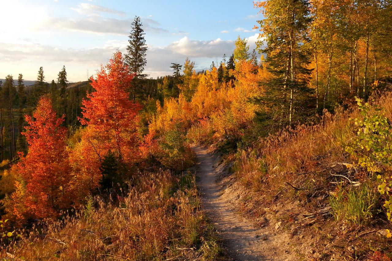 Fall hiking trail in Winter Park, Colorado