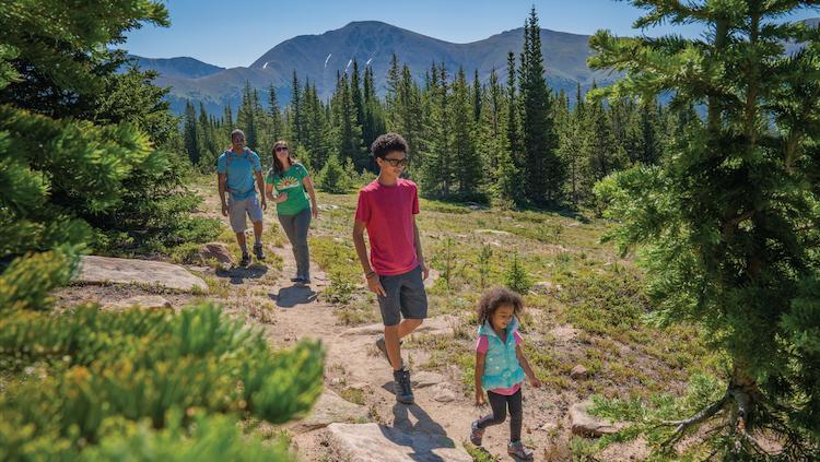 Family enjoying summer hiking