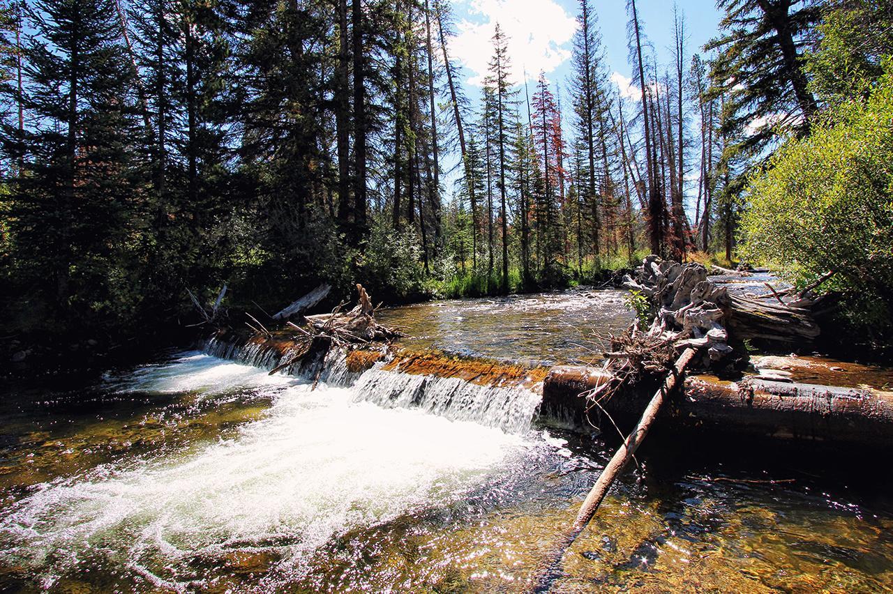 Colorado Waterfall Hike