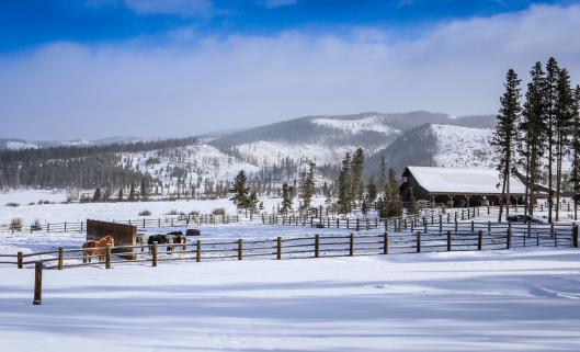 Winter Horseback Riding Colorado