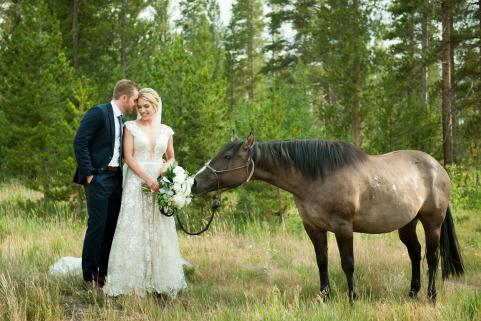 Summer Wedding with Horse