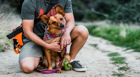 Stay Winter Park pet friendly rentals