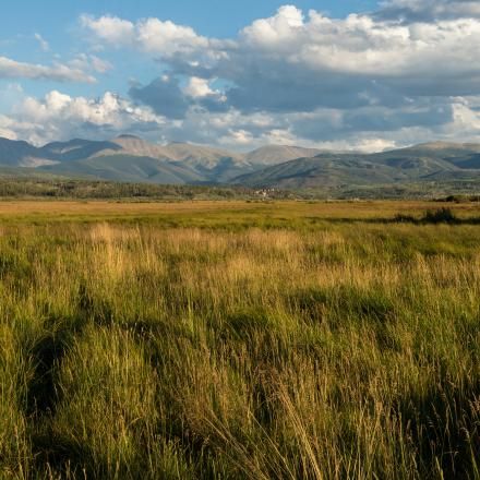 Scenic Meadow in Winter Park, Colorado