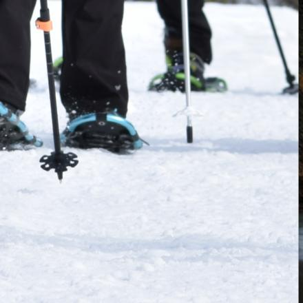 Close-up of snowshoes on fresh powder