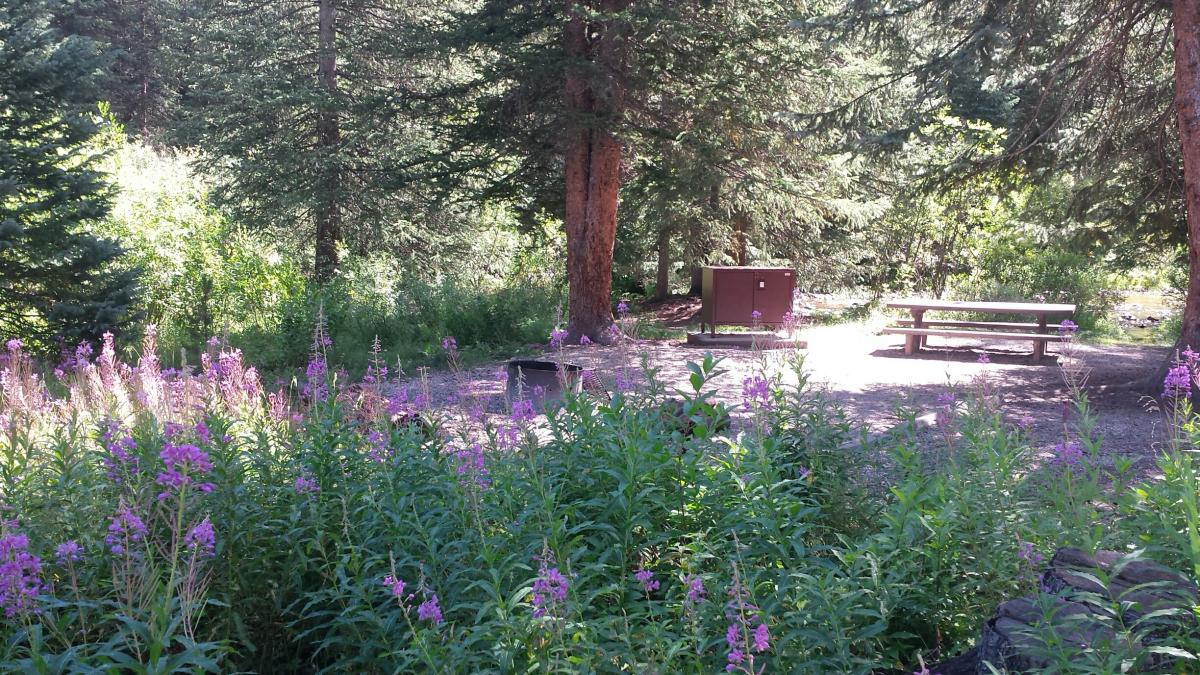 Guide to Camping near Winter Park, Colorado