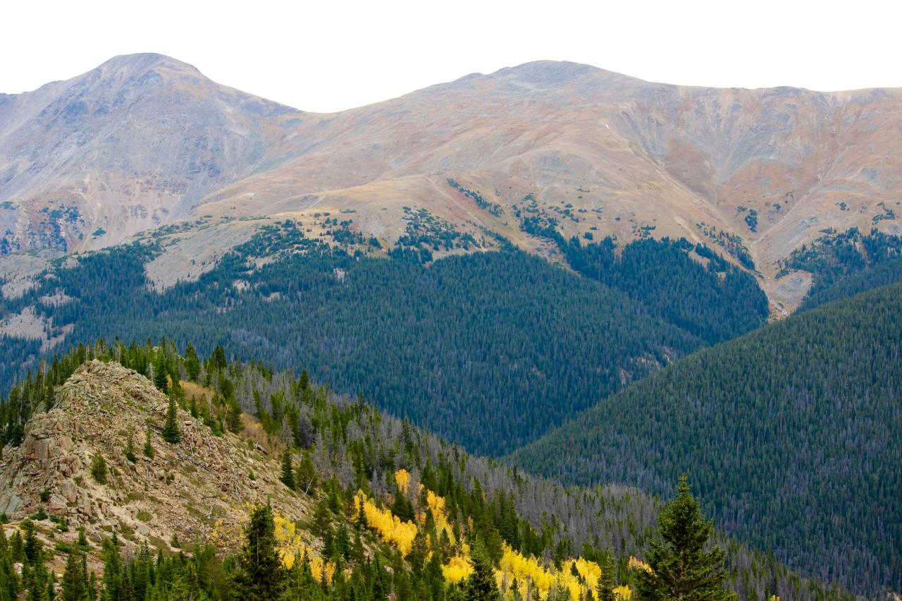 Fall Colors on Berthoud Pass, Winter Park