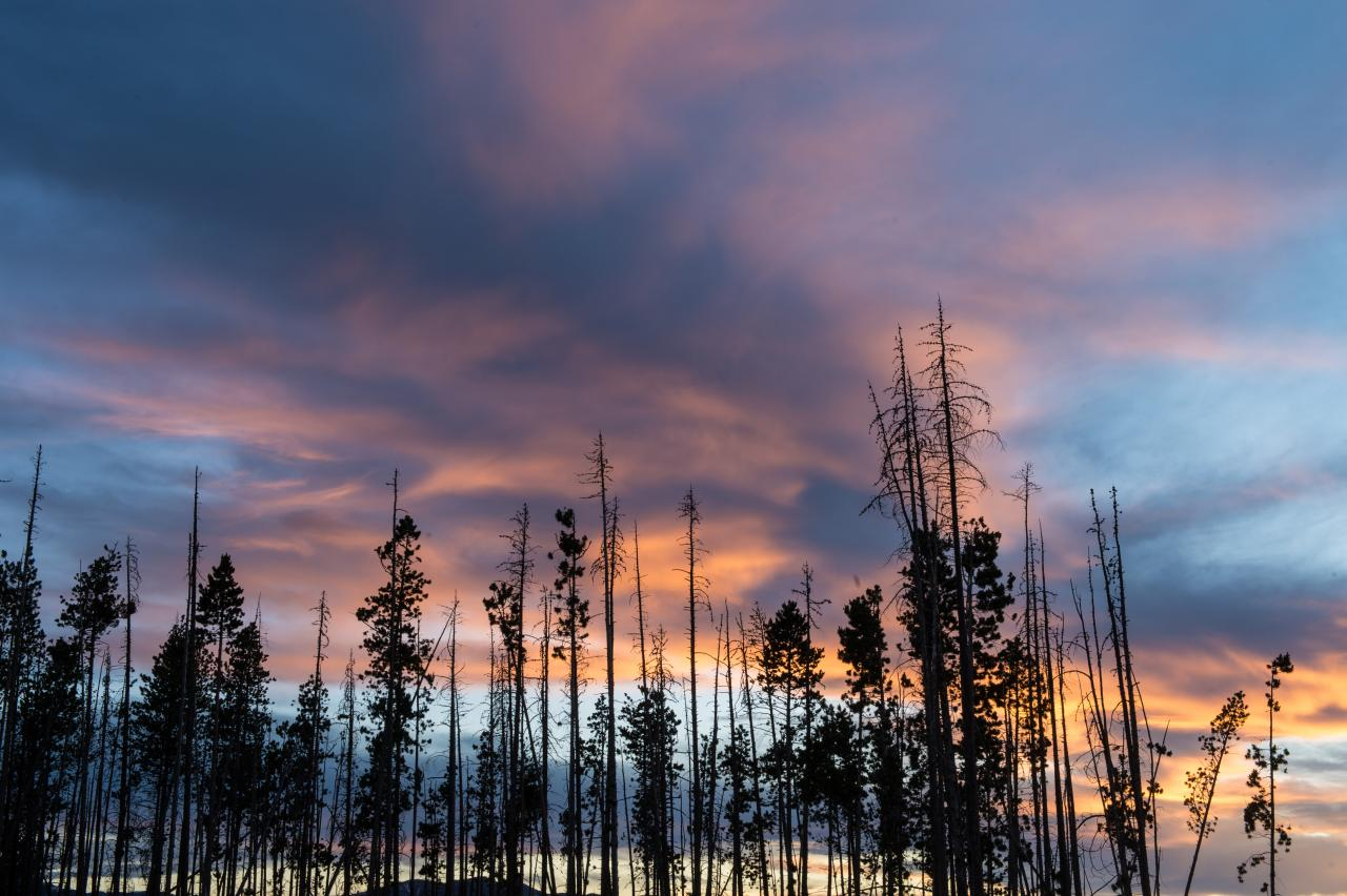 Summer Sunset in Winter Park, Colorado