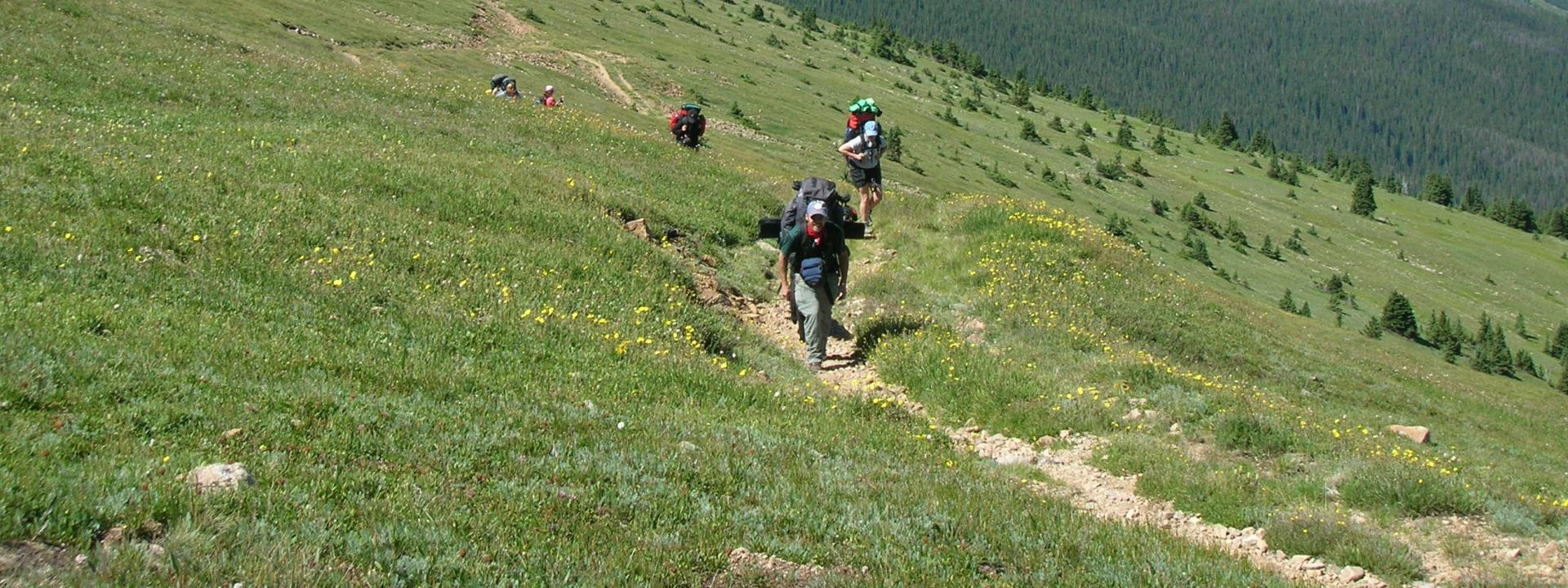 Back County Hiking Trail in Winter Park, Colorado