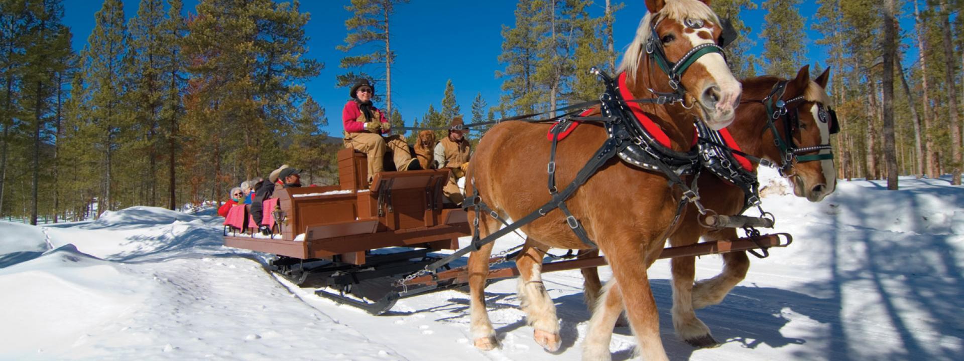 sleigh rides winter park colorado