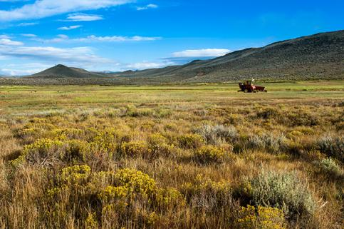 Ouray Ranch Conservation Easement. Photo by Susan Herpel.