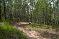 Bike Granby Ranch - New Fraser Canyon Trail