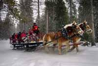 During the winter, warm up with a hot chocolate sleigh ride
