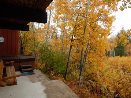 Fall view of private outdoor hot tub