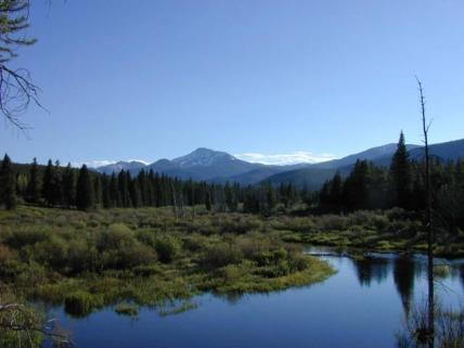 Summer view from Flume trail