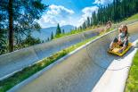 Colorado's Longest Alpine Slide