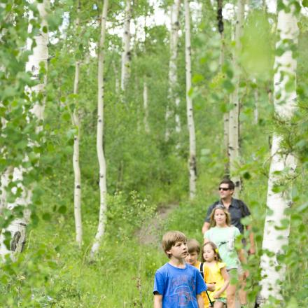 Hiking through the Aspens in Winter Park, Colorado