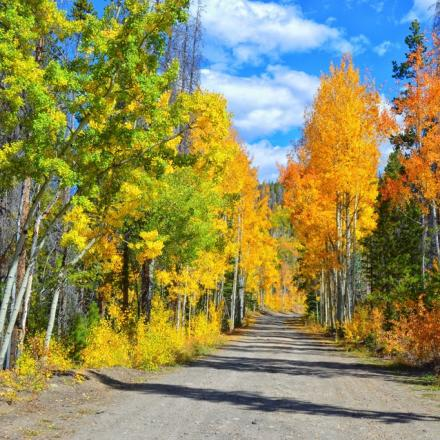 Corona Road in Fall near Winter Park, Colorado