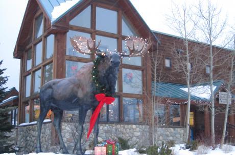 Winter Park Visitor Center Moose