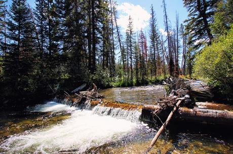 Winter Park Colorado Waterfall
