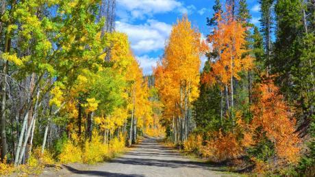 Corona Road in Fall near Winter Park, Colorado