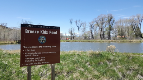 Access #9 Kemp/Breeze State Wildlife Area Breeze Unit-Kid's Pond