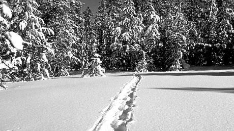 Venture into the backcountry near Winter Park, Colorado on snowshoe